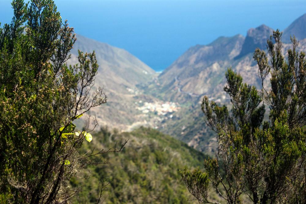 Turismo de experiencias La Gomera