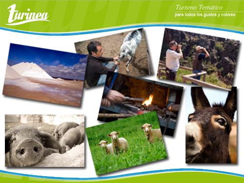 Ponle un marco al turismo temático con Turinea