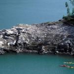 escapate a Asturias experiencias turísticas